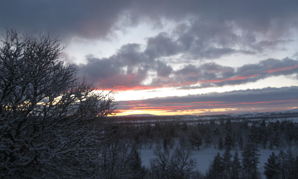 Winter's dark months paradox: less sunlight brings longer days in Dalarna