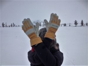 Wearing Hestra gloves on a cold Scandinavian day