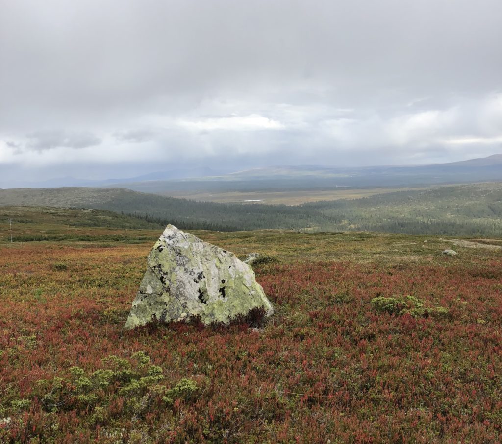 Old land in Swedish mountainous area, Töfsingdalen National Park